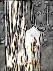 Winters Tree Inci Jones Artist